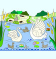 childrens color book cartoon family of swan on vector image vector image