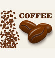 realistic coffee beans isolated on background vector image vector image