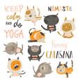set cute cats in yoga asana postures vector image