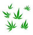 set of green medical marijuana or cannabis vector image vector image