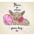 Small dog on a pillow vector image