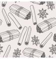 Seamless cinnamon and star anise vector image