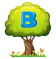 A tree with a letter B vector image vector image