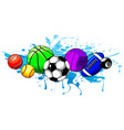 composed set different balls vector image