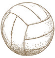engraving of volleyball ball vector image