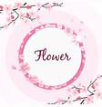 flower circle frame sakura pink background vector image vector image