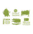 fresh organic natural food green labels set eco vector image vector image