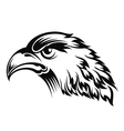 Realistic eagle head vector image