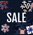sale banner with snowflake vector image