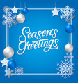 seasons greeting hand written lettering vector image vector image