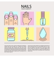 set color line icons on theme nails vector image