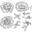 set doodle flowers vector image vector image