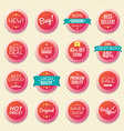 set of vintage logos badges and labels vector image