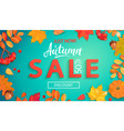 autumn sale banner in fall leaves frame vector image vector image