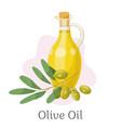 golden olive oil in vessel branch with drupes vector image