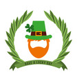leprechaun beard hat clover have a lucky day vector image