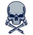 skull with crossbones vector image vector image