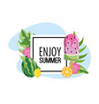 square emblem with watermelon ice lolly and leaves vector image vector image
