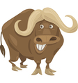 african buffalo cartoon vector image vector image