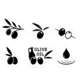 black olive set vector image vector image