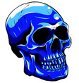 blue tattoo skull graphics art vector image