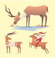 Christmas reindeer holiday mammal deer xmas vector image