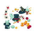 equipment and trained animals for magic tricks set vector image vector image