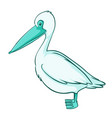 green pelican on white background vector image vector image