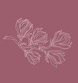magnolia branch drawing vector image vector image