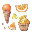 set citrus ice cream and cupcake vector image
