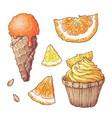 set of citrus ice cream and cupcake vector image