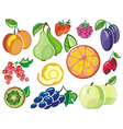 Collection of fruits icons vector image vector image