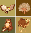 Different types of wild animal on brown background vector image vector image