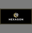 gn hexagon logo design inspiration vector image vector image