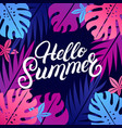 hello summer hand written lettering vector image