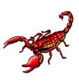 mascot icon a scorpion a vector image