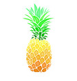 pinapple fruit summer abstract food vector image vector image