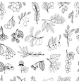 Seamless background garden and wild hand-drawn vector image