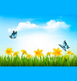 spring nature background with green grass flowers vector image vector image