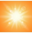 Summer sun on orange background vector image