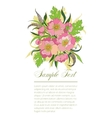 bouquet of summer flowers vector image