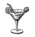 alcohol cocktail hand drawn vector image vector image