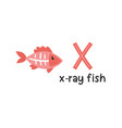 alphabet letter x and x-ray fish vector image vector image