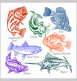 american fish - set for creative design t vector image vector image