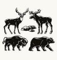 animals vintage monochrome composition vector image