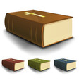 big old holy bible books set vector image