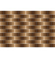 brown bricks - pattern vector image