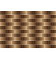 brown bricks - pattern vector image vector image