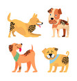 dogs images collection on vector image