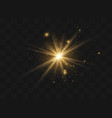 dust sparks stars vector image